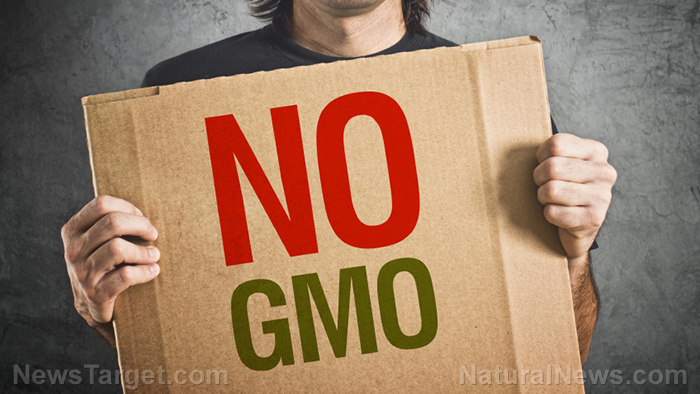 Top 12 GMO-promoting information sources to AVOID at all costs